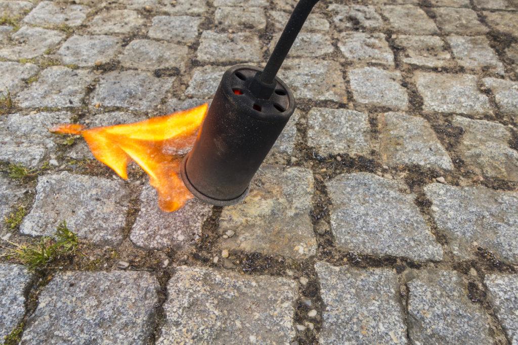 Flamme d'un désherbeur